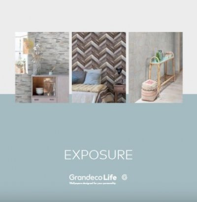 Grafika producenta EXPOSURE