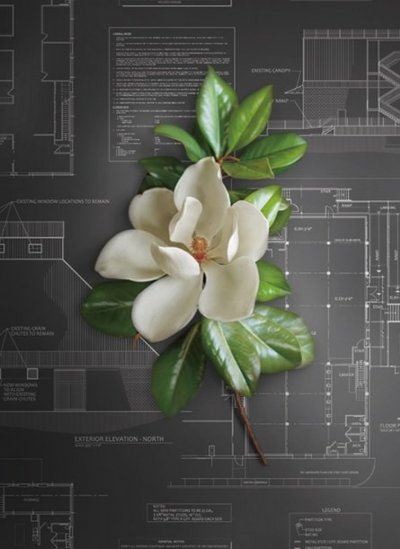 Grafika producenta MAGNOLIA HOME